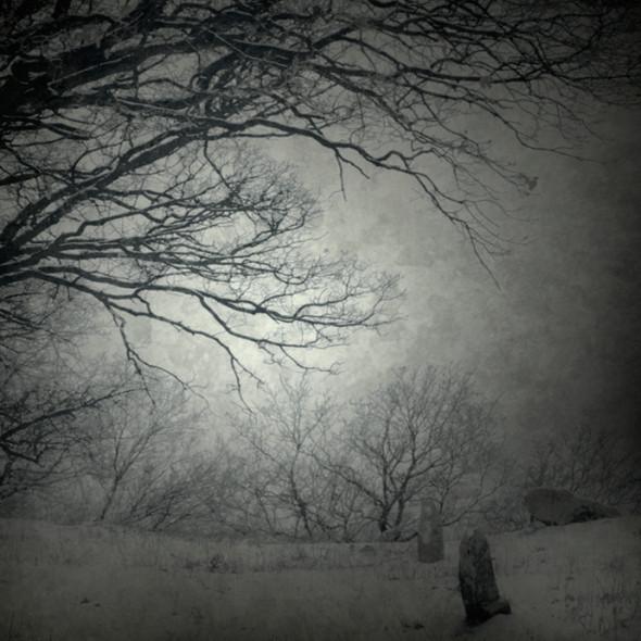 Изображение 1. Серые фотографии by Magdalena Wanli.. Изображение № 1.