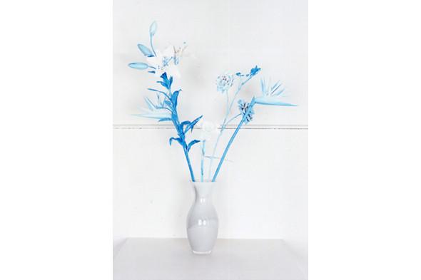Jaap Scheeren and Hans Gremmen Fake Flowers in Full Color. Cерия, состоящая только из фотографий неживых объектов. Изображение № 28.
