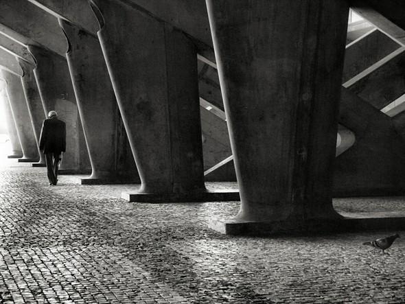 Жанровое фото отRui Palha. Лиссабон, Португалия. Изображение № 7.