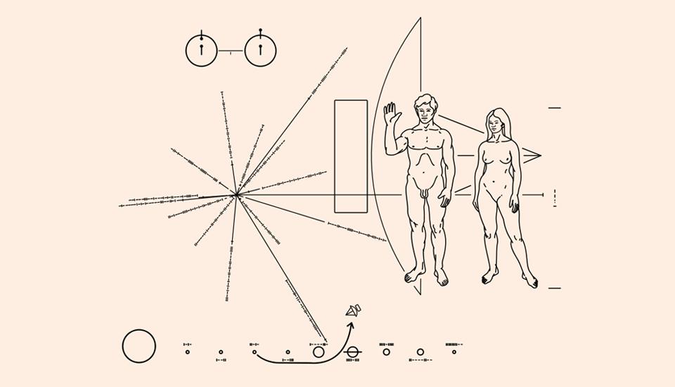 13 главных изображений в истории науки. Изображение № 8.