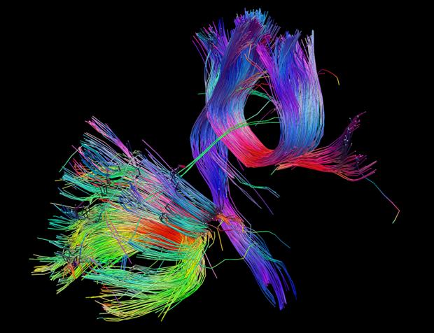 База данных: Как превратить информацию в искусство. Изображение № 3.