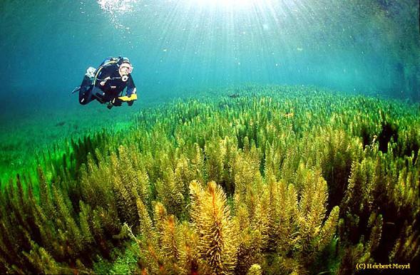 Фотограф Herbert Meyrl. Скамейки под водой. Изображение № 11.
