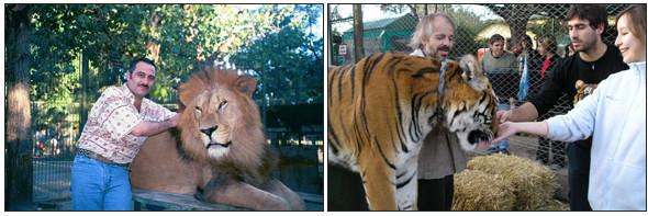 Lujan Zoo. Изображение № 7.