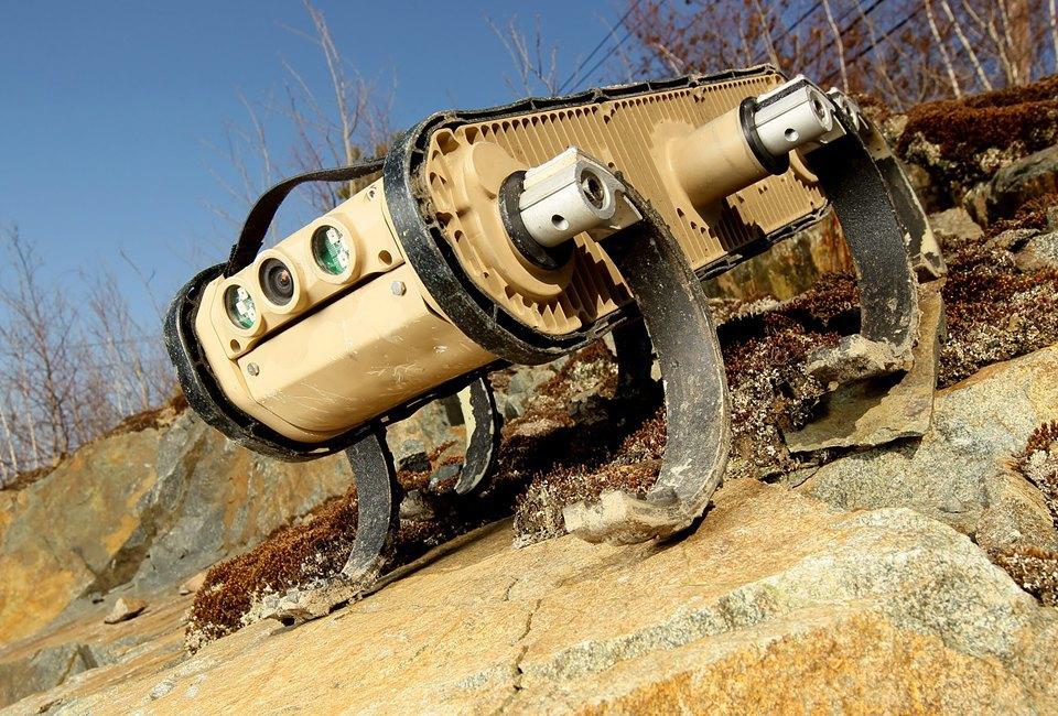 Фото и видео: роботы Boston Dynamics занимаются странными вещами. Изображение № 4.