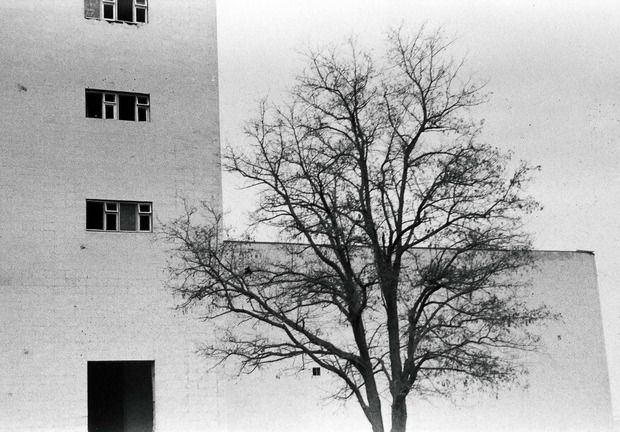 "Обзор фотоаппарата ""Зенит 122"" от сообщества ..ФОТОКАМЕРА.. + фото. Изображение № 16."