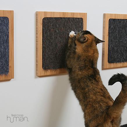 Hi-tech райдля кота. Изображение № 1.