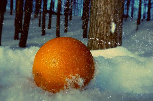 Моя зима. Изображение № 17.