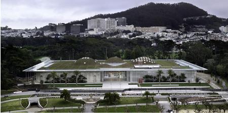 Академия подзелёным покрывалом. Изображение № 9.