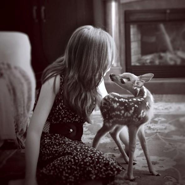 ЭМИЛИ ЛИ : девушка и олень. Изображение № 8.