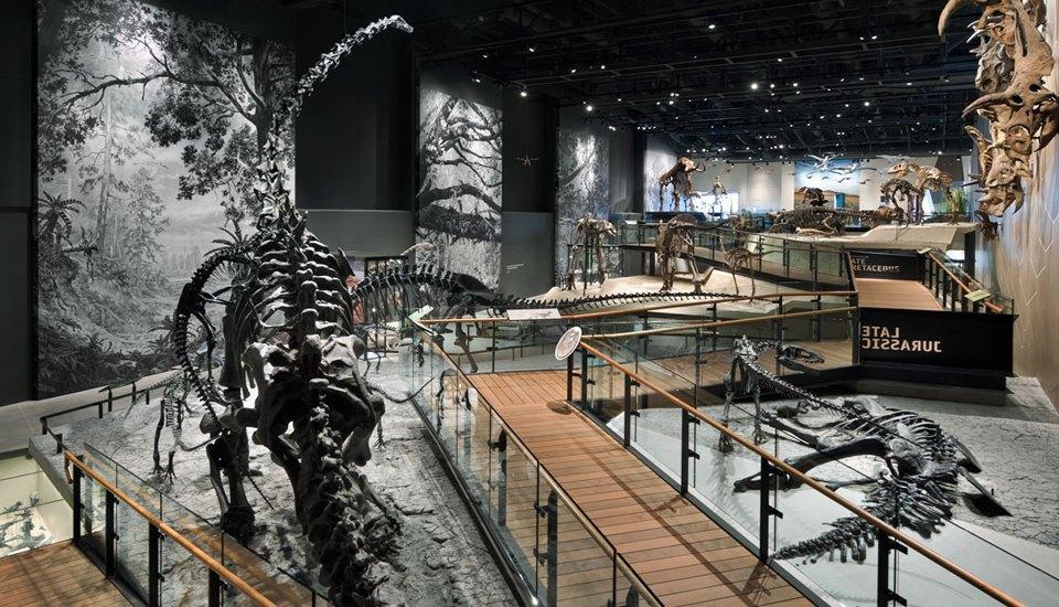 «То, что происходит  в музее, будет  происходить везде» . Изображение № 2.