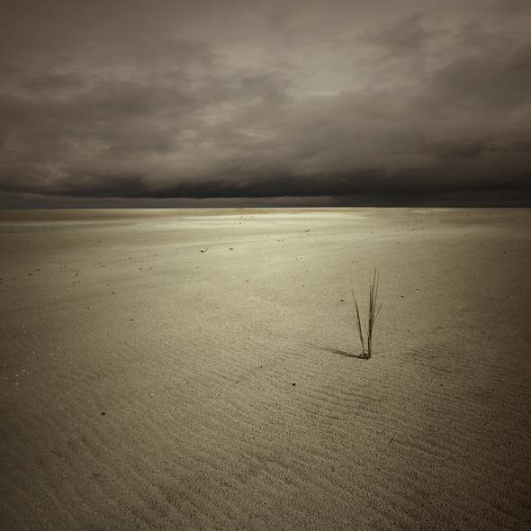 Одиночество, которое восхищает. Изображение № 27.