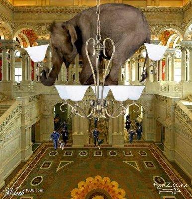 Какспрятать слона. Изображение № 7.