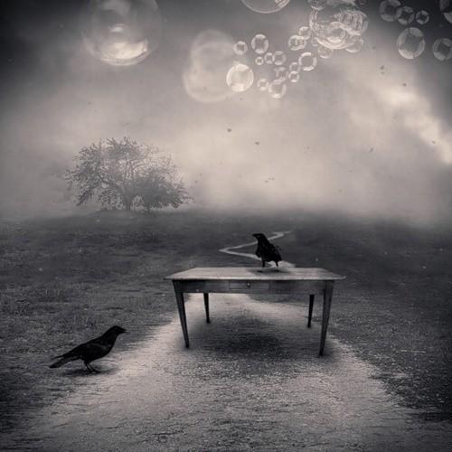 Фотограф Denis Olivier. Изображение № 14.