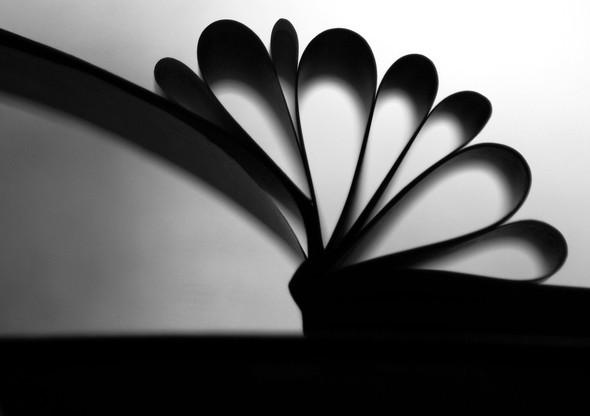 Books. Изображение № 9.
