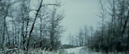 Убийство Джесси Джеймса (Эндрю Доминик, 2007). Изображение № 22.