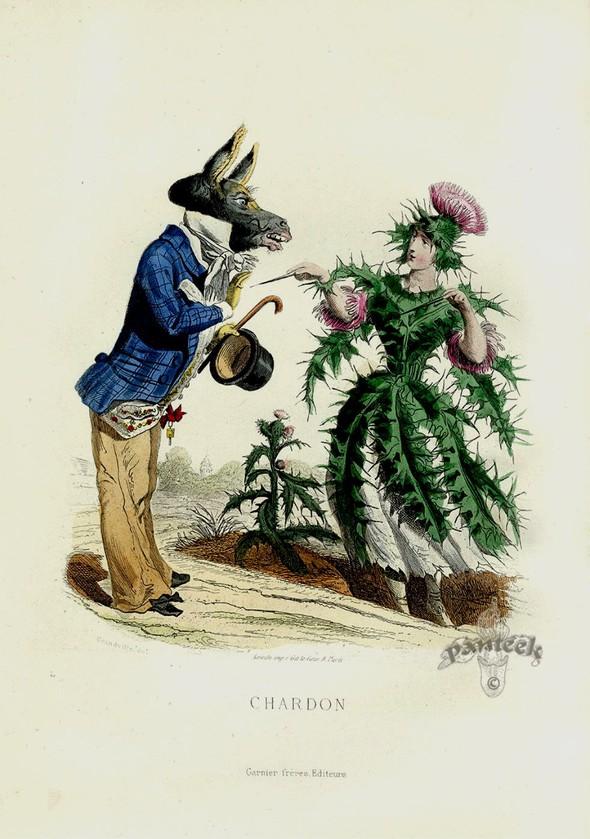 Винтажные иллюстрации J.J. Grandville. Изображение № 4.