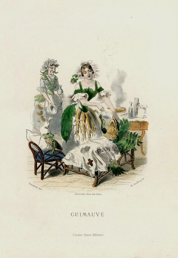 Винтажные иллюстрации J.J. Grandville. Изображение № 6.