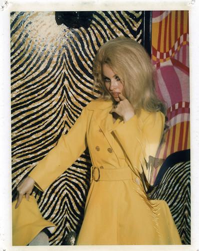 Изображение 30. Стриптиз,Polaroid и60-е годы.. Изображение № 30.