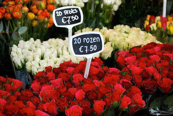 Цветочный рынок в Амстердаме. Изображение № 1.