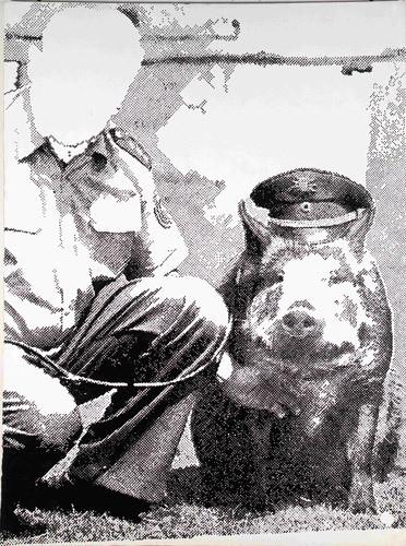 Зигмар Польке (Sigmar Polke), Польша-Германия. Изображение № 37.