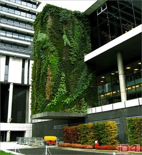 Диалог с природой: вертикальные сады. Изображение № 3.