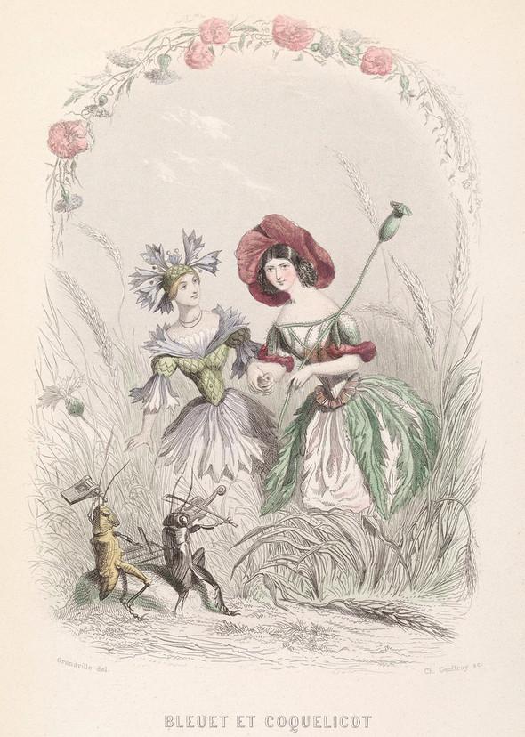 Винтажные иллюстрации J.J. Grandville. Изображение № 14.