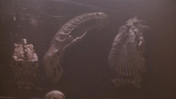 Первое и неожиданное скрещение хищника и чужого произошло в фильме «Хищник 2», где в качестве охотничьего трофея оказалась голова чужого.. Изображение № 18.