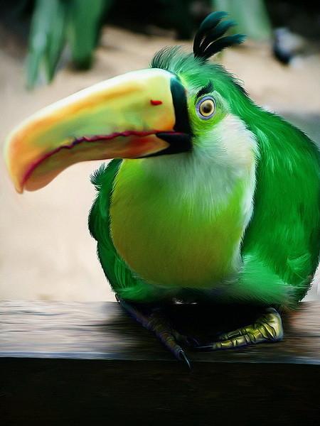 Реальные Angry Birds. Изображение № 2.