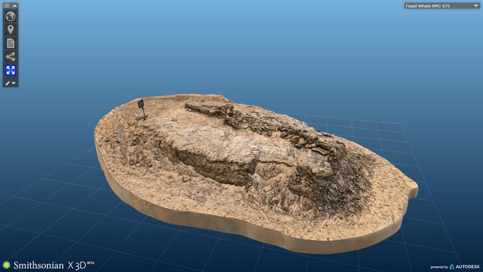 Музейные экспонаты можно будет распечатать на 3D-принтере. Изображение № 2.