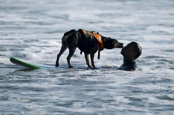 Лучшие новые снимки от National Geographic. Изображение № 38.