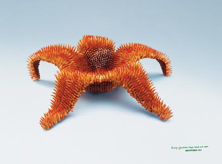 Greenpeace ads. Изображение № 4.
