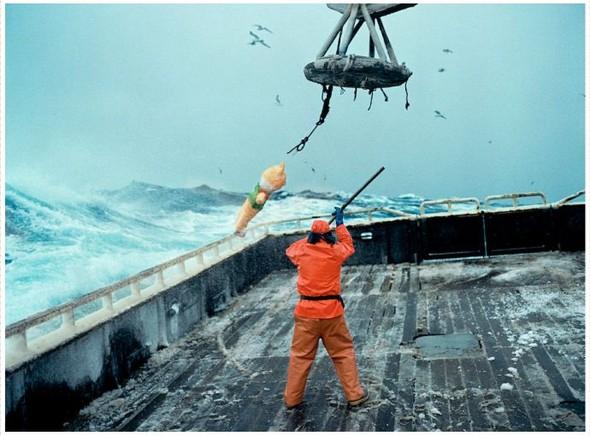 Corey Arnold. Морская фотография. Изображение № 20.