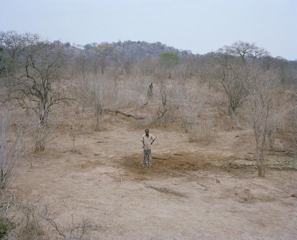 David Chancellor: охота на слона. Изображение № 9.