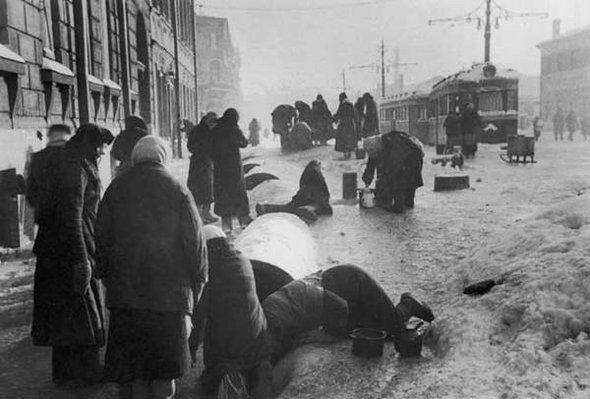 Блокада ленинграда. Изображение №3.