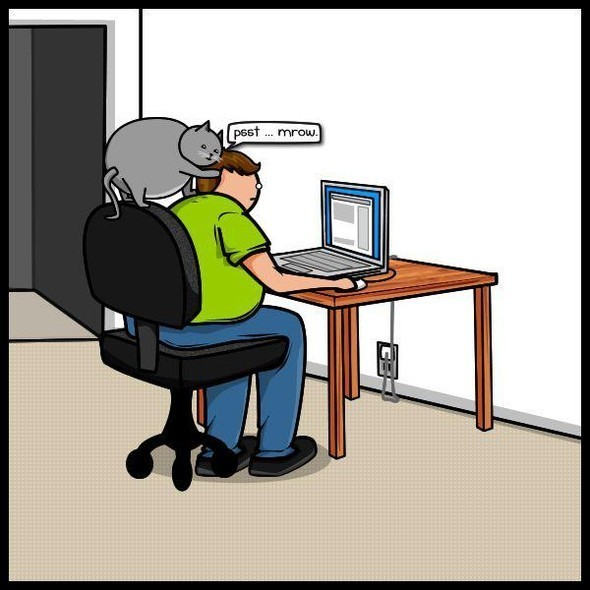 Cat vs. Internet. Изображение № 7.