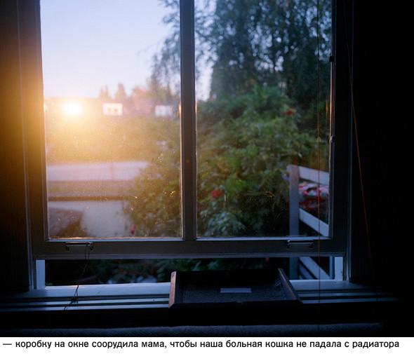 Фотограф – ЯнПосма. Изображение № 22.