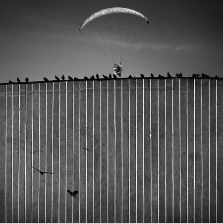 Фото Dariusz Klimczak. Изображение № 1.