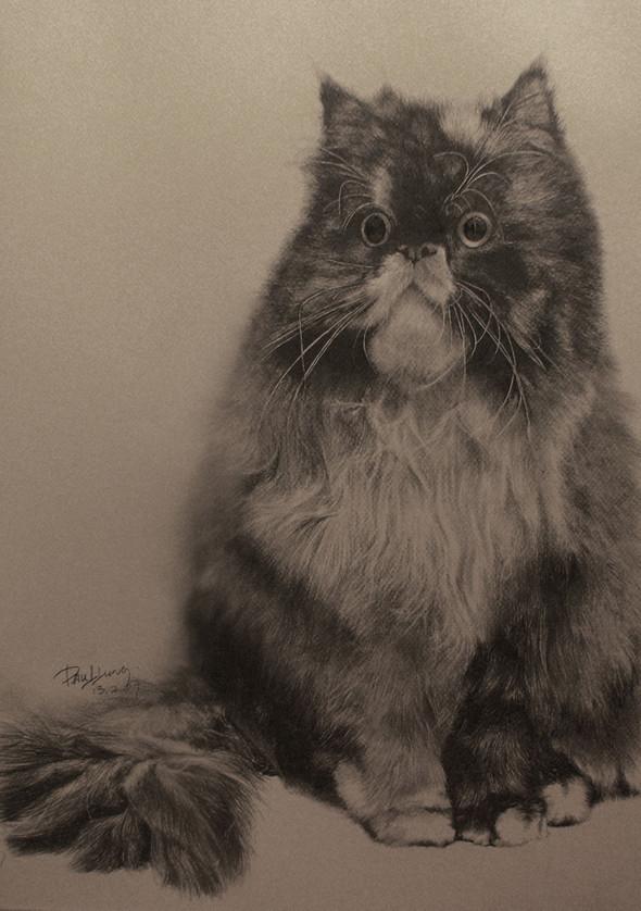 Paullung.и его коты. Изображение № 16.