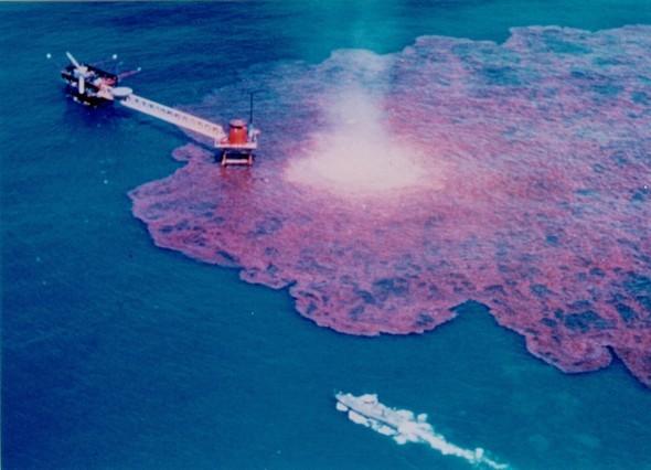 Крупнейшая экологическая катастрофа!. Изображение № 11.