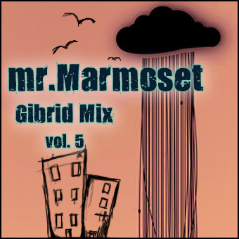 Mr.Marmoset-GibridMIX vol.5. Изображение № 1.
