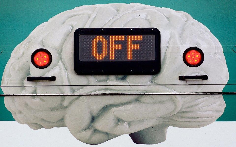 Как изменились наши представления о мозге за последние 10 лет. Изображение № 4.