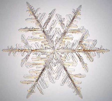 Снежинки – временные произведения искусства. Изображение № 1.