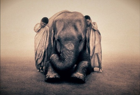 Ashes and Snow(Пепел и снег) Gregory Colbert. Изображение № 10.