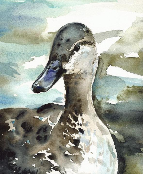 Изображение 38. Amber Alexander - животные, сияющие акварелью.. Изображение № 38.
