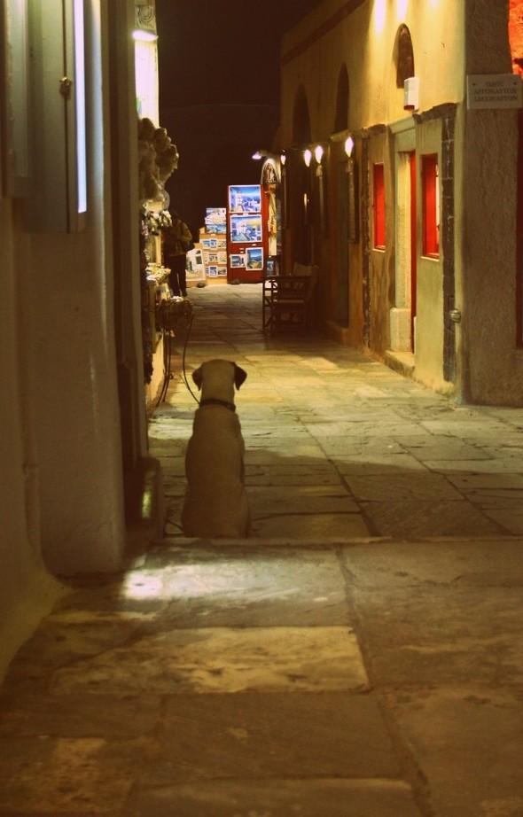Санторини: Боги, вино и закаты. Изображение № 33.