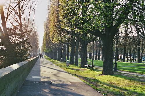 Изображение 58. Париж.. Изображение № 81.