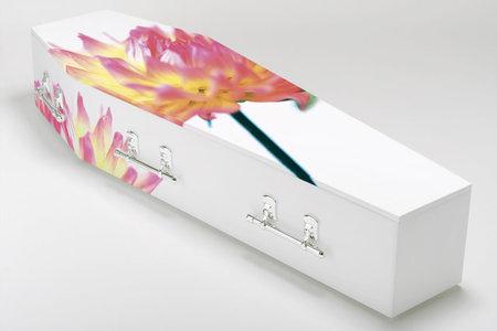 Coffins. Изображение № 9.