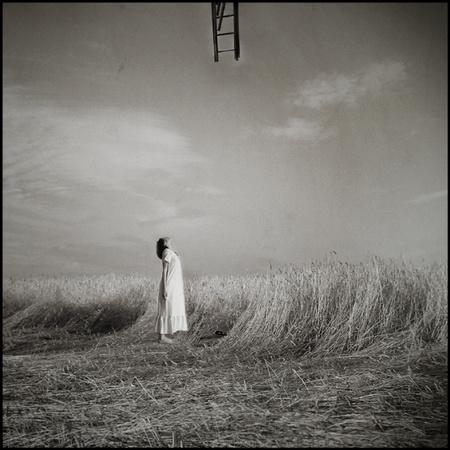 Польский фотограф BBerenika. Изображение № 4.