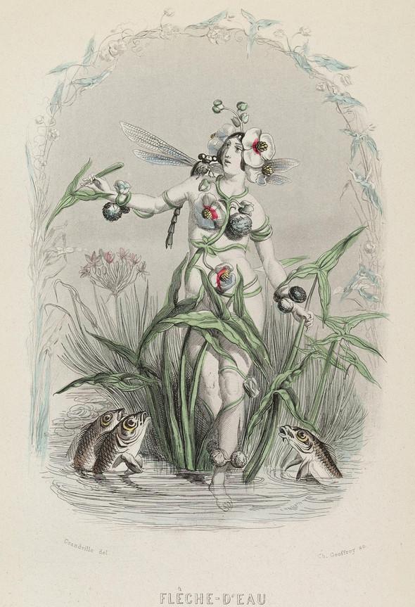 Винтажные иллюстрации J.J. Grandville. Изображение № 16.