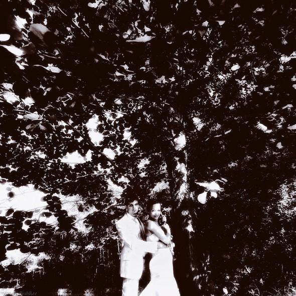 Любовь ботаника (попса) - non stop. Изображение № 13.